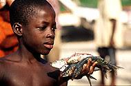 Crisis alimentaria en Africa 2011 - 008