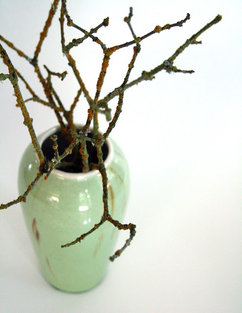 my new vase wiht branches