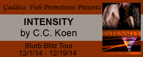 12_2 intensity VBT_TourBanner_Intensity copy