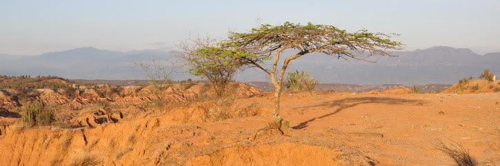 Tatacoa désert