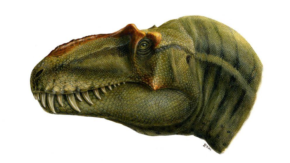 Resultado de imagem para dinossauro, «Rei da Chacina»Fotos
