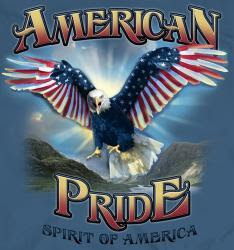 Image result for American Pride