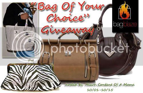 bagblaze-bag-of-your-choice-giveaway
