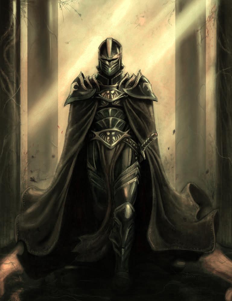 Image - 193512-paladin.jpg - Dark Souls Wiki - Wikia