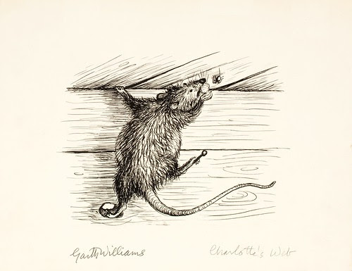 black ink sketch of rat on wall