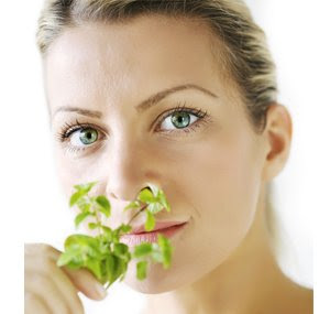 Click Here for Natural Herpes Treatment - Herbal Alternatives That Work