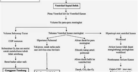 laporan pendahuluan ventrikel septum defek vsd lengkap