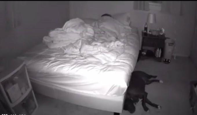 Instala una cámara para descubrir por qué no podía dormir y ve que el problema era ella