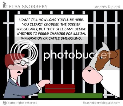 Legal dilemma