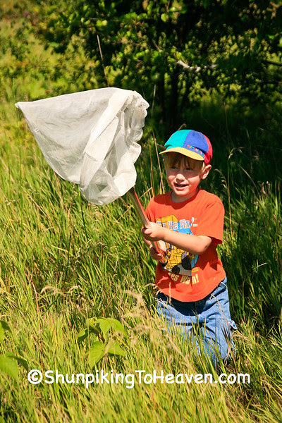 Chasing Butterflies, Rock County, Wisconsin