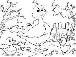 Dibujos De Animales De La Granja Para Colorear Paracolorearnet