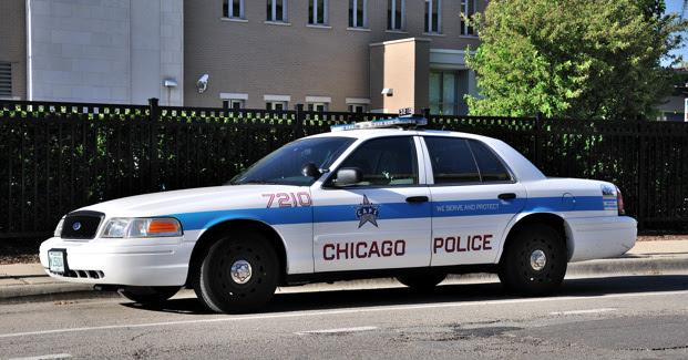chicago escorts ebony
