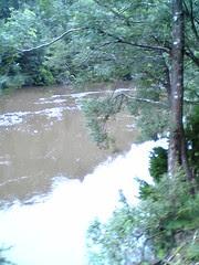 River beside ABT Railway