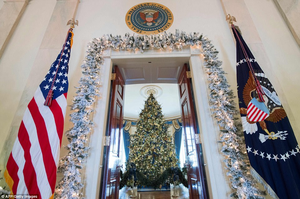 The Blue Room's Christmas tree stands at 18 feet, 6 inches tall and was brought into the White House last week, via carriage, from growers based out of Endeavor, Wisconsin