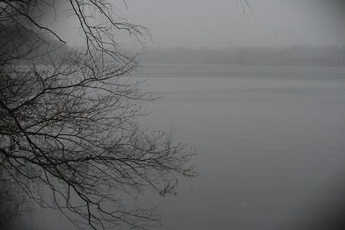 pond 074