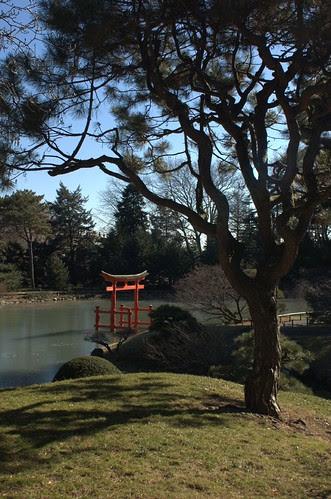 Japanese Garden, BBG