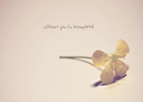 Without You Im Incomplete Picture Quotes