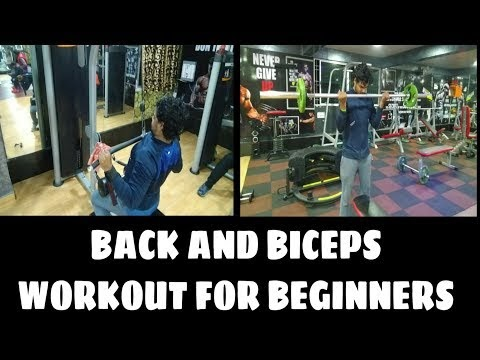 BACK and BICEP Complete Workout for Beginners - Back and