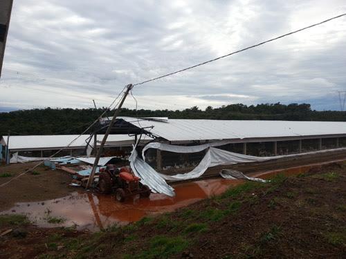 Divulgação/Prefeitura Roncador