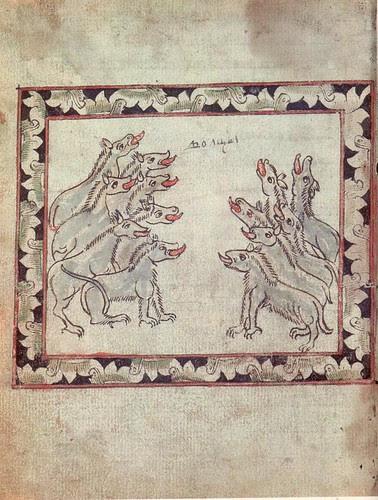 Skazanie - wolves