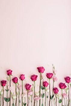Gambar Wallpaper Keren 3d Bunga Mawar Gambar Bagus