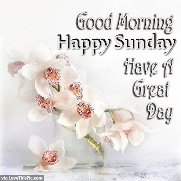Good Morning Happy Sunday Image Pictures Photos And Images For