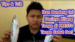 Resep Bandeng Duri Lunak Tanpa Panci Presto Durifuzziblog