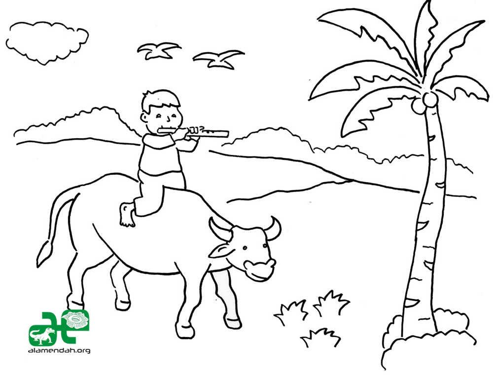 Gambar Sketsa Gambar Mewarnai Sayuran Bunga Hitam Putih Auto