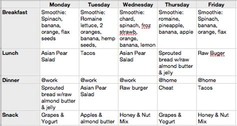 raw food meal planning raw healthy journey