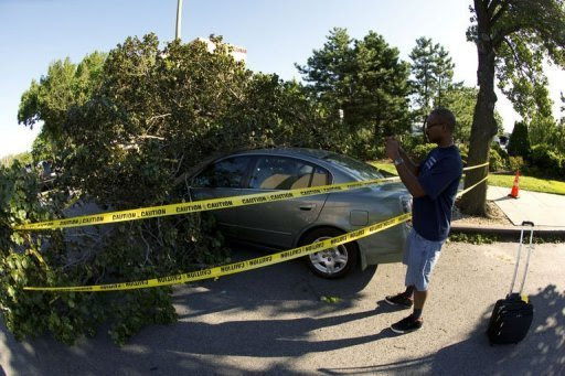 A man takes a photo of a fallen tree in the Queens borough of New York