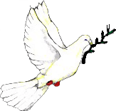 Peace dove.png