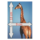 Magnet 9x13 cm   $0.61 : magnetCards.eu   Original