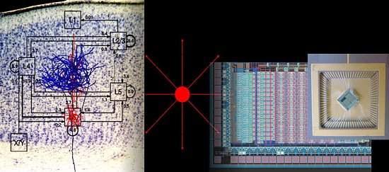 Processador neuromórfico não roda programas, imita comportamentos