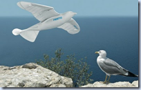 Festo Bionic Bird