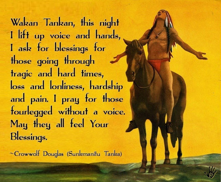 Native American Quote Quote Number 598810 Picture Quotes