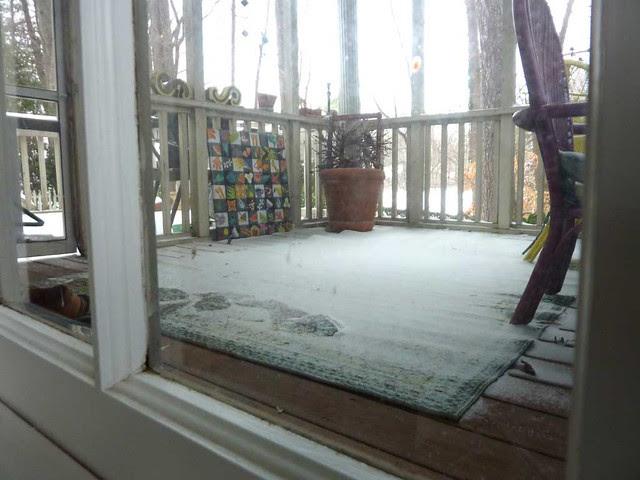 P1060110-2011-01-10-Snow-Atlanta-Fine-Snow-Inside-Screen