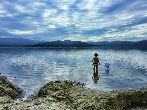 In the Lake por /\ltus