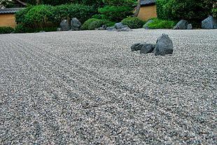 Lightmatter zen garden.jpg