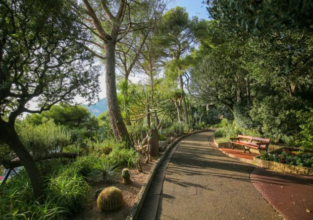 Monaco Gardens you Should Visit