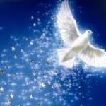 Maria Ghiorghiu, experiente divine la Mormantul Sfant, in Israel!