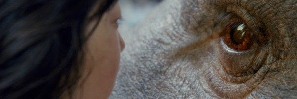 Image result for okja 600x200