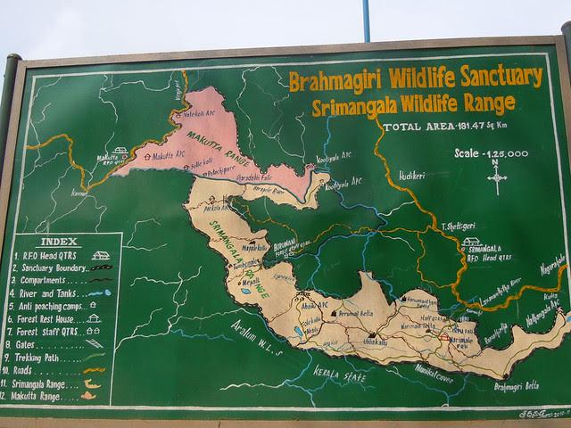 Brahmagiri_Trek_Brahmagiri_Wildlife_Sanctuary