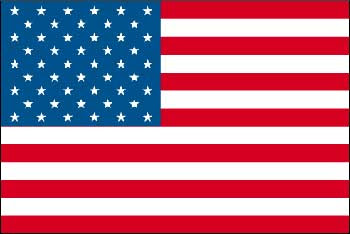 http://www.mynetbizz.com/images/usa-flag.jpg