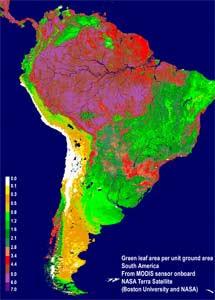 Superficie verde en Sudamérica.   NASA