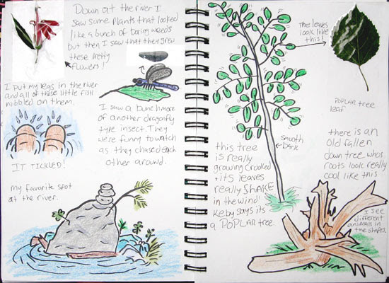 F.W.'s Nature Journal spread