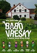 Poster undefined  Babovřesky