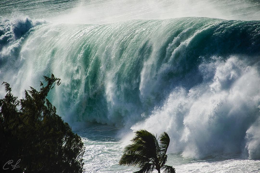 hawaii vague géante, hawaii océan de surtension, des vagues géantes Lash Hawaii Oceanfront Homes Dans Événement historique Surf, historique hawaii événement de surf février 2016, géants vague hawaï images, hawaii vague géante vidéo