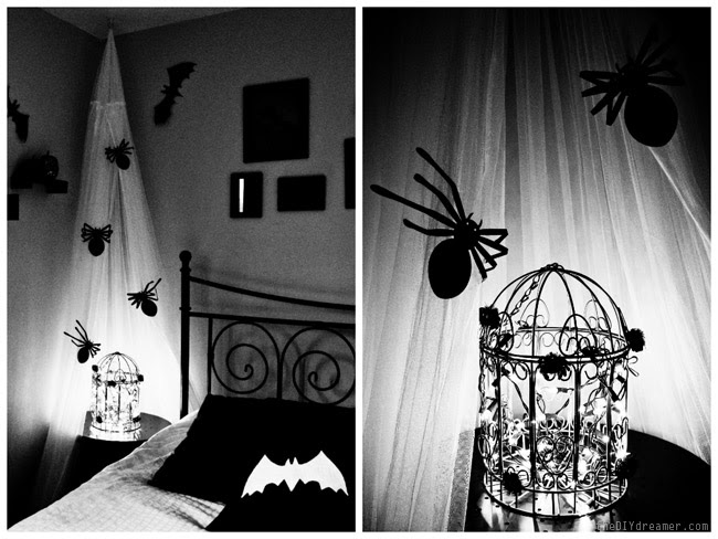 Creepy Crawly Spiders and Bats