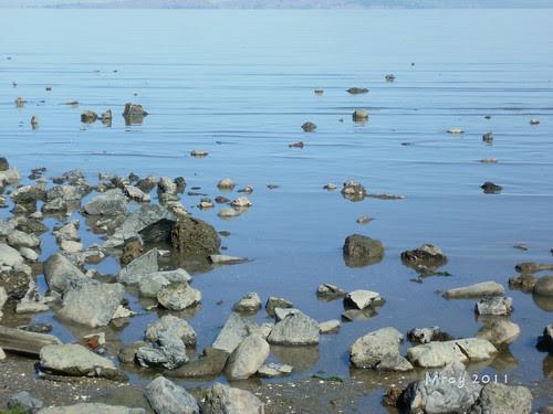 coastal cleanup 064