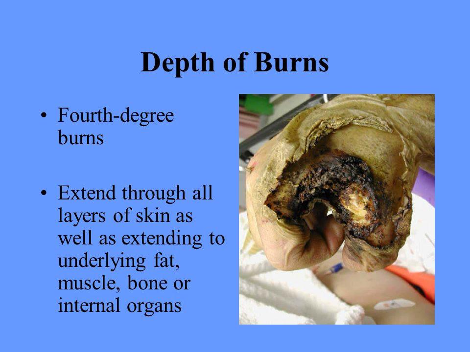 body fat percentage appearance
